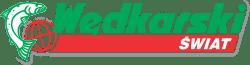 logo WS_wektor